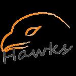 株式会社Hawks